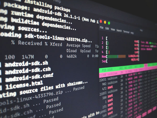 What's The Difference Between Windows And Linux Hosting